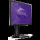 "BenQ BL2411PT - LED monitor 24"""