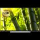 Toshiba 55U6763DG - 140cm  + Voucher až na 3 měsíce HBO GO jako dárek (max 1 ks na objednávku)