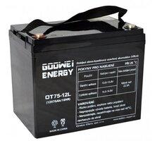 GOOWEI ENERGY OTL75-12 - VRLA GEL, 12V, 75Ah