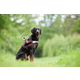 Rollei popruh pro psa pro kamery GoPro 3,3+,4/ Rollei série 200/ 300/ 400/ 500