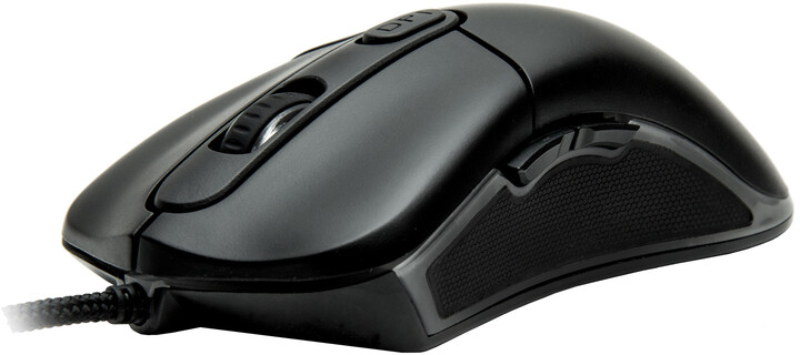 CZC Assassin GM650, tichá