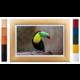 FrameXX Home 150 digitální fotoobraz, černý se stříbrným rámem