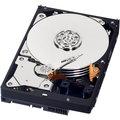 WD Blue - 500GB