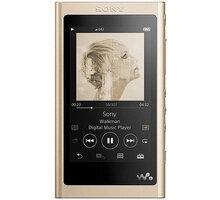Sony NW-A55L - 16GB, zlatá - NWA55LN.CEW
