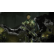 Evolve - XONE