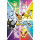 Plakát Pokémon - Eevee Evolution
