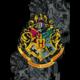 Deka Harry Potter - Bradavice (černá)