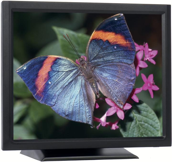 "iiyama ProLite T1931SR-B1 - LCD monitor 19"""