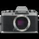 Fujifilm X-T100, tělo, stříbrná  + Voucher až na 3 měsíce HBO GO jako dárek (max 1 ks na objednávku)