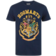 Tričko Harry Potter - Crest Varsity (XXL)