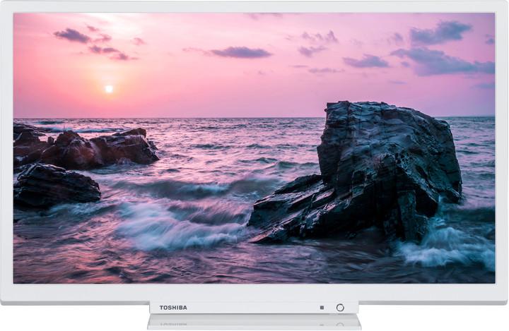 Toshiba 24W1764DG - 61cm