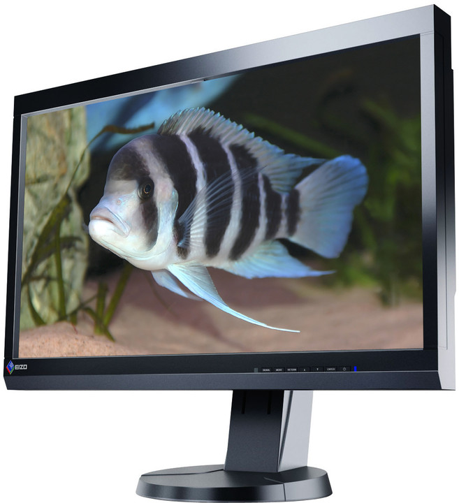 EIZO ColorGraphic CS230-BK - LED monitor 23""