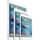 """APPLE iPad Pro Cellular, 12,9"""", 256GB, šedá"""