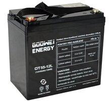 GOOWEI ENERGY OT55-12 - VRLA AGM, 12V, 55Ah - OTL55-12