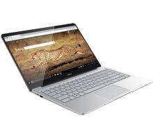 UMAX VisionBook 14Wg Pro, stříbrná - UMM23014M