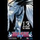 Komiks Bleach - The Undead, 13.díl, manga