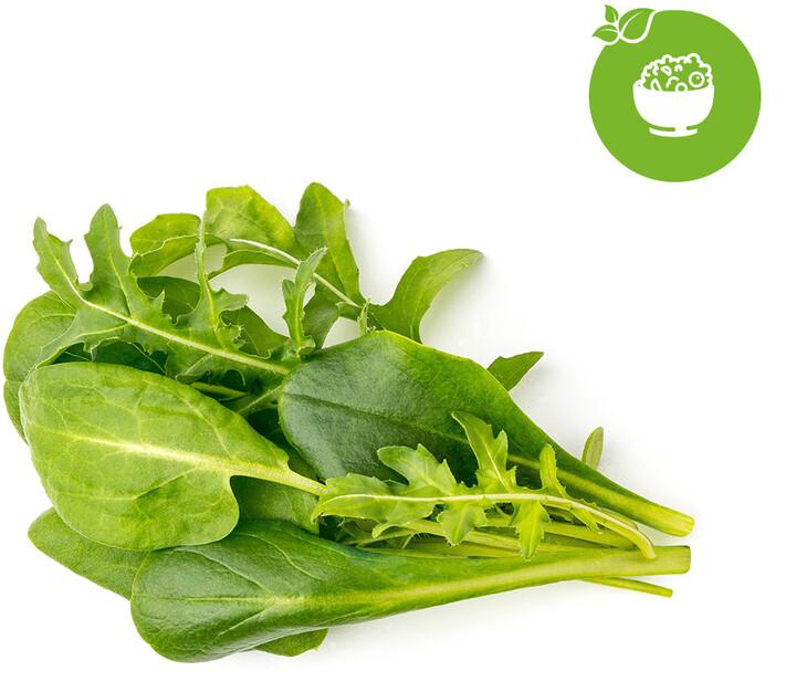 Click and Grow Smart Garden sazenice mix salátů