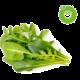Click and Grow Smart Garden sazenice mix salátů Kuki TV na 2 měsíce zdarma