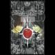 Komiks Death Note - Zápisník smrti, 13.díl, manga