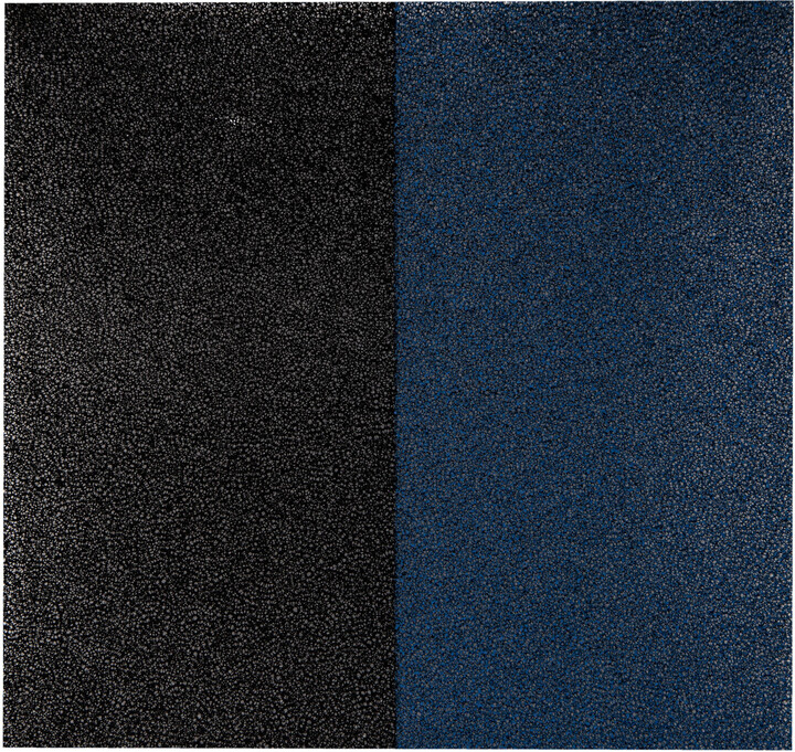 Rohnson filtr DF-002 pro Rohnson R-9616 Ionic + Air Purifier a R-9630 Ionic + Air Purifier