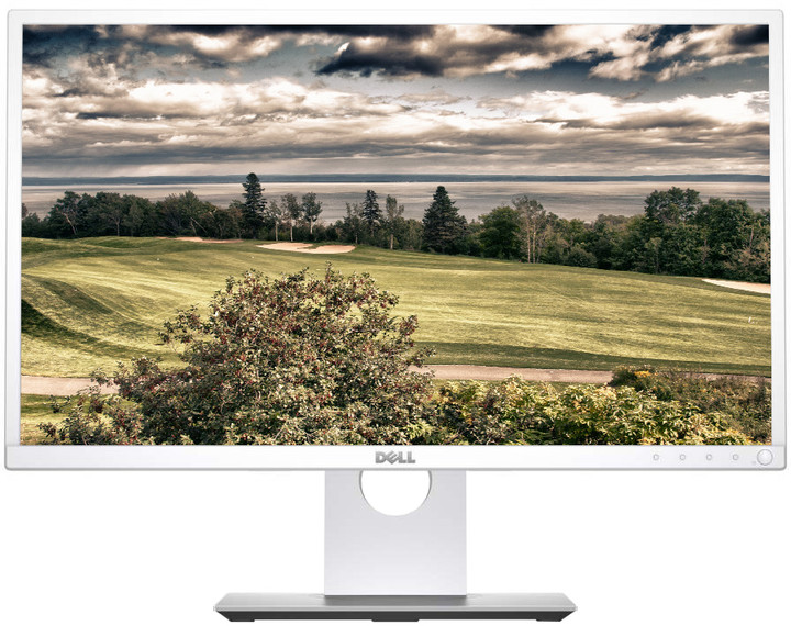 Dell P2317H - LED monitor 23""