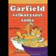 Komiks Garfield velkorysost sama, 31.díl