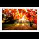 FrameXX PRO 431 digitální fotoobraz, rám bílý